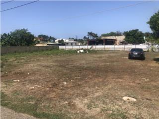 Bo. Islote Sector Vibora, Arecibo. 917 Mts