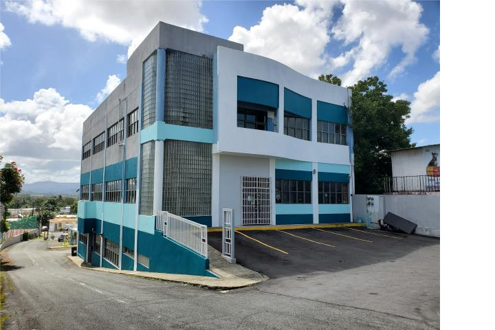 Tintillo Hills Puerto Rico