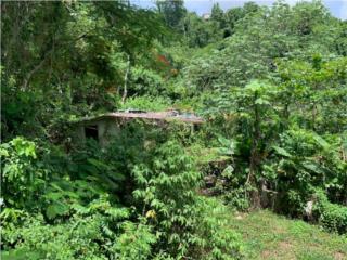 SOLAR GUARAGUAO SECTOR LA CHORRERA, $27,000
