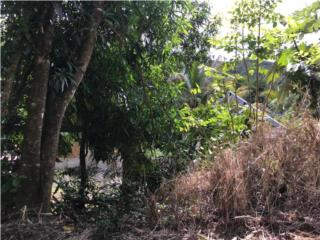 TERRENO BARRIO NEGROS, $35,000
