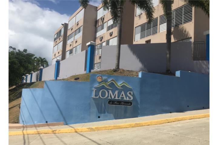 Lomas De Rio Grande Puerto Rico