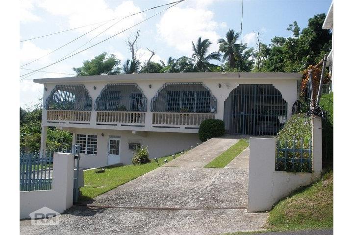 Tortugo Puerto Rico