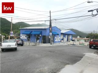 LOCAL COMERCIAL EN COAMO P. R