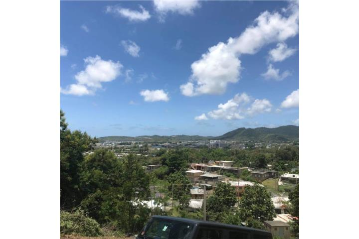 Roig Puerto Rico