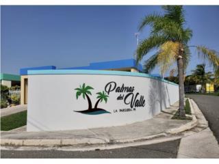 Nuevo precio Palmas del Valle Lajas