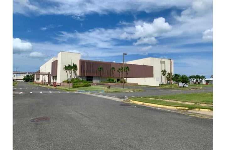 Guanajibo Puerto Rico