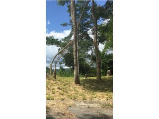 Land for sale San German   68,500 NEW PRICE