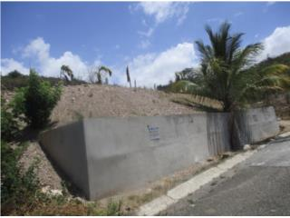 Quintas de Altamira
