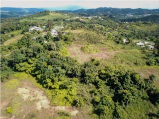 Terreno 12.43 acres - Desarrollo de residencias