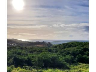 Zoni Beach Area, 1 Acre Lot For Sale
