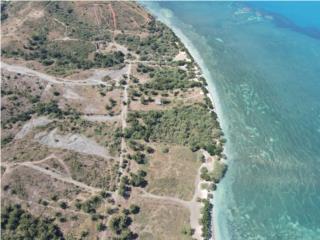 5 Acres Beachfront in Cabo Rojo - RUSTIC