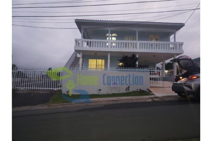 Palomas Puerto Rico