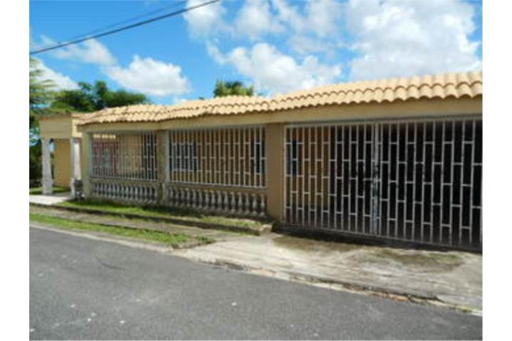 Galateo Puerto Rico