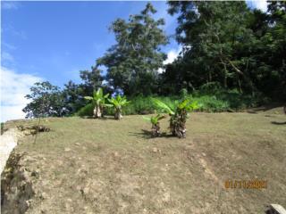 Hermoso Terreno en Guaynabo