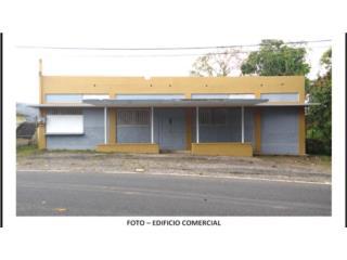 EDIFICIO COMERCIAL+29.10 CDAS+CASA