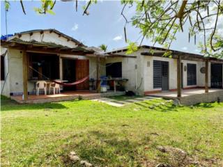 2 Acre Dream Property in Lush, Breezy Pilon