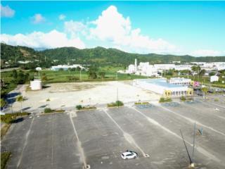 Venta Terreno en Humacao - 11.5 acre