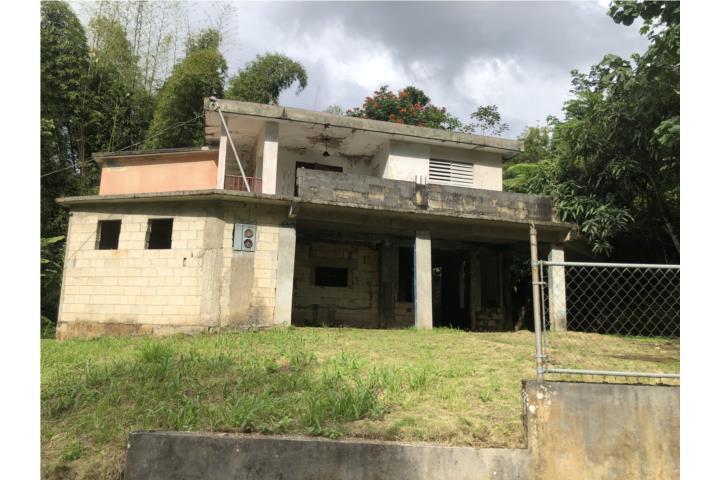 Maravilla Sur Puerto Rico