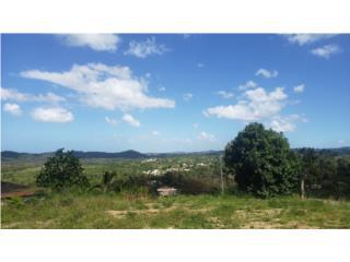 Vista Panoramica - 1 cda de terreno