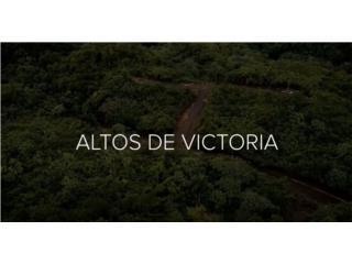 REMANENTE PROYECTO ALTOS DE VICTORIA (7)