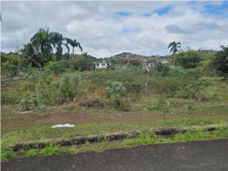 Barrio Toita, en el mismo pueblo de Cayey