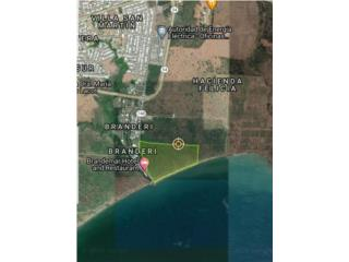 52 acres with 440 meters beach front