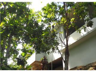 Casa de Campo, 3.7 Cuerdas