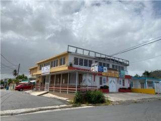 LOCAL COMERCIAL EN BO. NAVARRO, GURABO