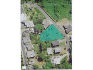 Sec. La Changa Solar 4, Bo. Rio Cañas, Caguas