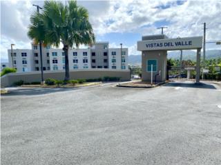 Villas del Valle/Opcionado