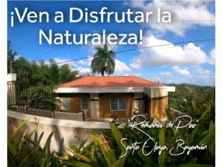 Bayamón- Ven a VIVIR con la Naturaleza y en Paz!!