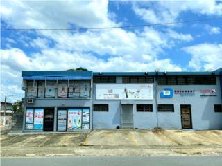 Magnífica oportunidad comercial en Bayamón