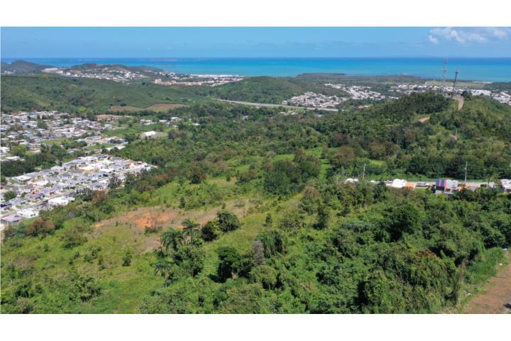 Saco, El Puerto Rico