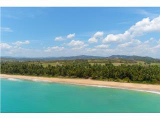 Buena Vista - Palmas del Mar - 91.26 acre