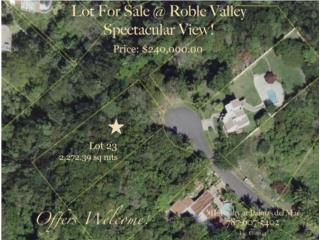 Roble Valley Lot 23