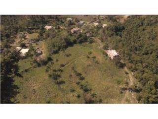 Bo. Quebrada Arena- hacienda con 55 crdas