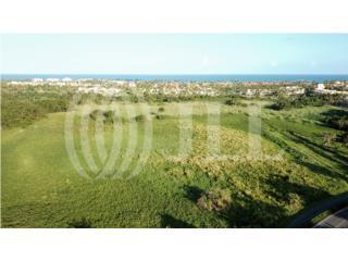 Development Land 71.63 acres - Palmas del Mar