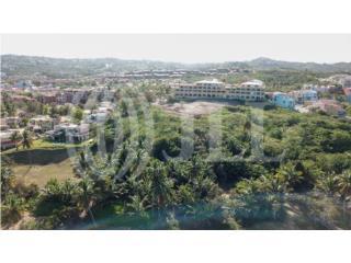 Palmas Inn - 9.6 acres for development