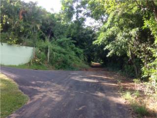 QUEBRADA FAJARDO-SOLAR 2.98CUERDAS APROX.235K