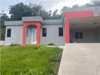 Bo Caguitas, casa, 3h/2b PRONTO EN EL MERCADO