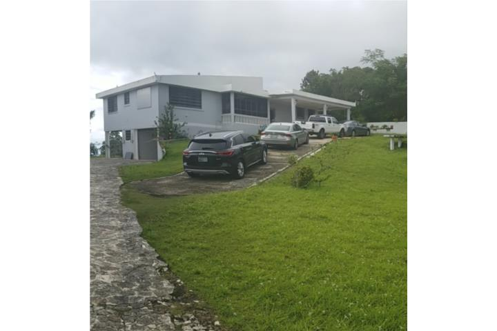Dajaos Puerto Rico