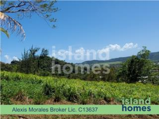 GREAT LOCATION - NICE VIEWS - LOT FOR SALE