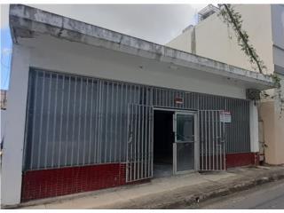 LOCAL COMERCIAL CENTRO DEL PUEBLO CAGUAS