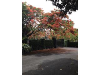Tintillo Hills Estate, 6 miles from San Juan