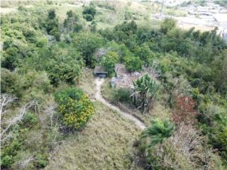 Venta Estructura y terreno, Turabo Ward
