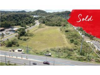 Terreno Manati 11.44 acre  - VENDIDO