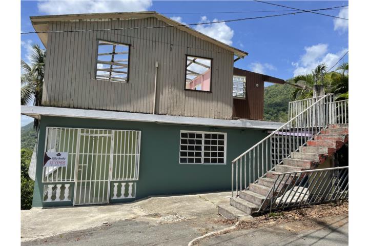 Barrio Nuevo Puerto Rico
