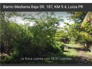 Bo. Mediania Baja, Loiza PR, Terreno, $77,000