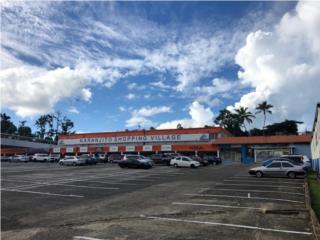 Se Vende Centro Comercial 60,000 p/c aprox.