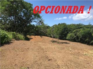 GUAYABO, FINCA 3.84 CDAS, BUENA TOPOGRAFIA !